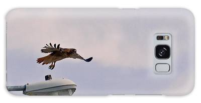 Red-tailed Hawk In Flight Galaxy Case
