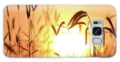 Sunset Rye IIi Galaxy Case