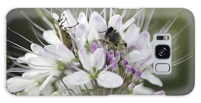 The Beetle And The Bee Galaxy Case