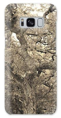 The Wicked Tree Galaxy Case
