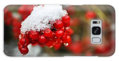 Galaxy Case featuring the photograph Winter Berries by Ryan Wyckoff