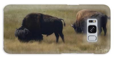 Wyoming Buffalo Galaxy Case