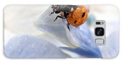 Ladybug Galaxy S8 Cases