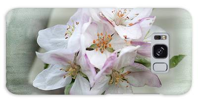 Apple Blossoms From My Hepburn Garden Galaxy Case