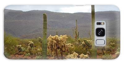 Arizona's Sonoran Desert  Galaxy Case