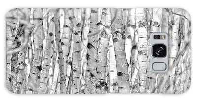 Galaxy Case featuring the photograph Aspen Forest Iv by Brad Allen Fine Art