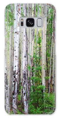 Aspen Grove In The White Mountains Galaxy Case