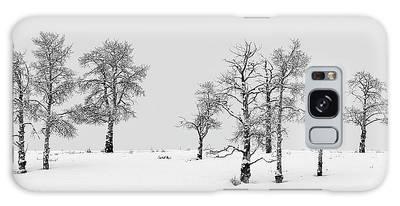 Aspen Tree Line-up Galaxy Case