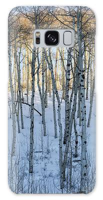 Aspens In Shadow And Light Galaxy Case