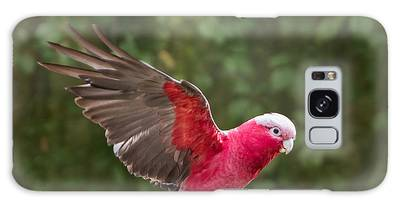 Galaxy Case featuring the photograph Australian Galah Parrot In Flight by Patti Deters