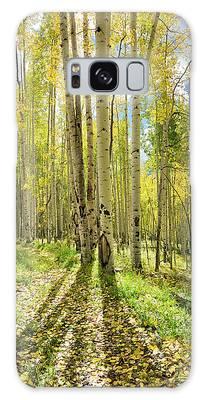 Backlit Aspen Trail Galaxy Case
