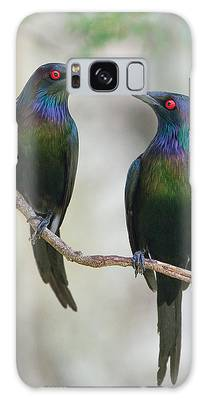 Starlings Galaxy Cases