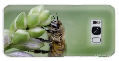 Busy Bee Galaxy Case