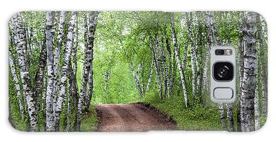 Galaxy Case featuring the photograph Birch Tree Forest Path #3 by Patti Deters