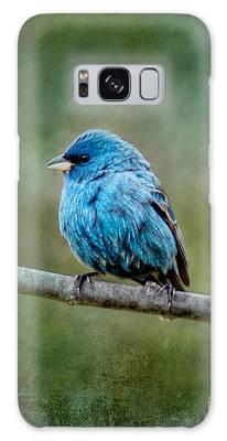 Bird In Blue Indigo Bunting Ginkelmier Inspired Galaxy Case