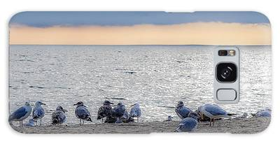 Birds On A Beach Galaxy Case