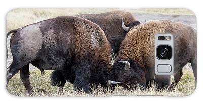 Bison Fight Galaxy Case