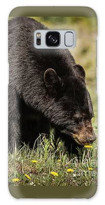 Galaxy Case featuring the photograph Black Bear by Brad Allen Fine Art