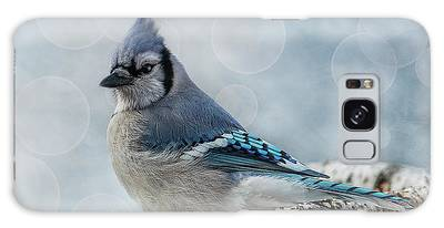 Galaxy Case featuring the photograph Blue Jay Perch by Patti Deters
