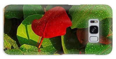 Bold Red Sea Grape Leaf Galaxy Case