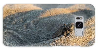 Brave Beginnings Sea Turtle Hatchling Delray Beach Florida Galaxy Case