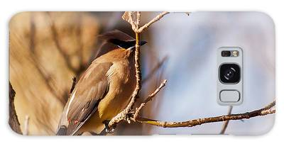 Cedar Waxwing In Autumn Galaxy Case