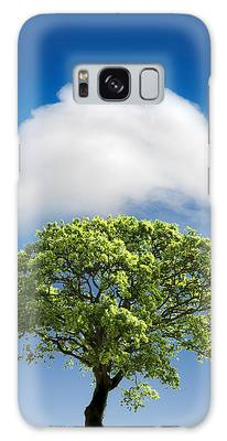 Tree Galaxy Cases