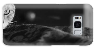 Egyptian Mau Galaxy S8 Cases