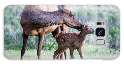 Cow And Calf Elk Galaxy Case