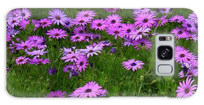 Dreaming Of Purple Daisies  Galaxy Case