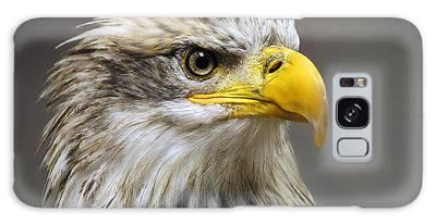 Eagle Galaxy Cases
