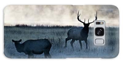 Elk In The Mist Galaxy Case