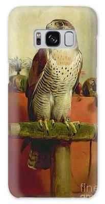 Falcon Galaxy Cases