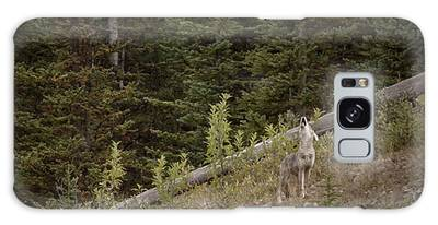 Galaxy Case featuring the photograph First Howl by Brad Allen Fine Art