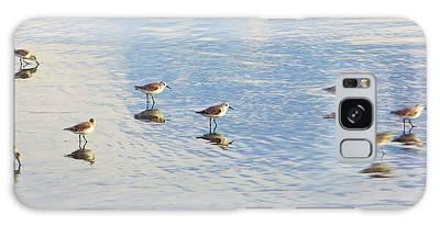 Flock Of Sanderlings Galaxy Case