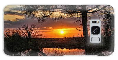 Florida Pine Sunset Galaxy Case