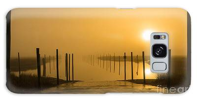 Golden Fog On The Nissequogue Galaxy Case