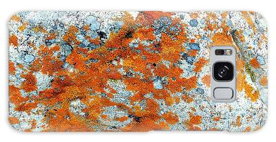 Golden Lichen Galaxy Case