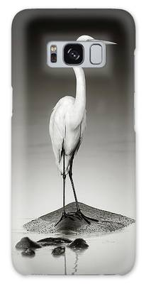 White Egret Photographs Galaxy Cases