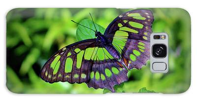 Galaxy Case featuring the photograph Green And Black Butterfly by Cynthia Guinn