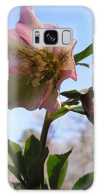 Hellebore Morning Galaxy Case