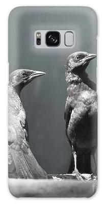 Blackbird Galaxy Cases