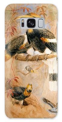 Hornbill Galaxy Cases
