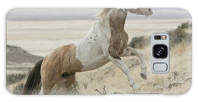 Horse Power Galaxy Case
