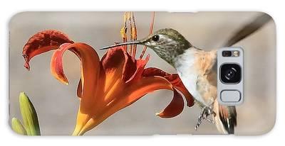 Hummingbird Whisper  Galaxy Case