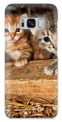 Kittens Galaxy Case
