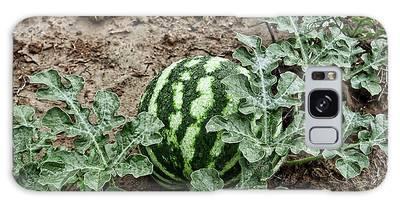 Ky Watermelon Galaxy Case