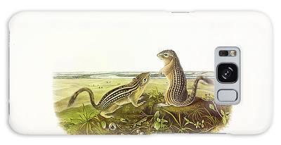 Designs Similar to Leopard-spermophile