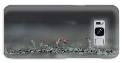 Lichen-scape Galaxy Case