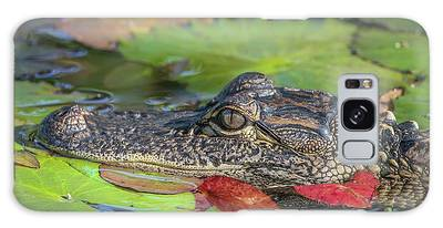 Galaxy Case featuring the photograph Lily Pad Gator by Tom Claud